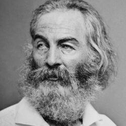 Els pantalons de marca de Walt Whitman