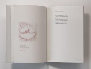 simulacio-llibre-1