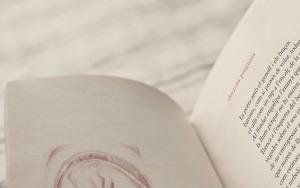 simulacio-llibre-4