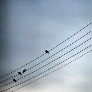 Foto de Dimitris Iliopoulos