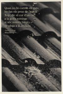 pluja-teulada