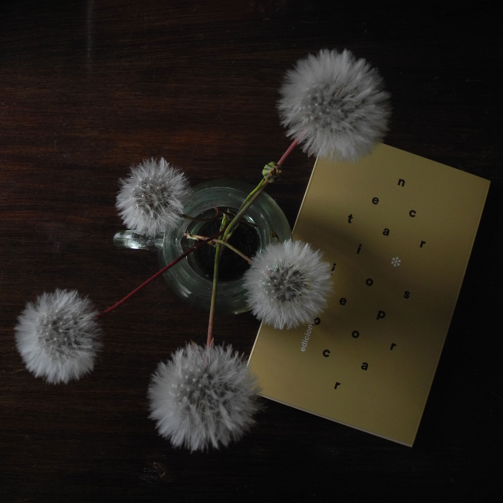 nectari-dandelions